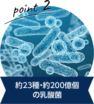 約23種・約200億個 の乳酸菌