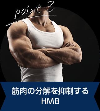 筋肉の分解を抑制する HMB