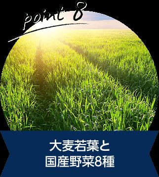 大麦若葉と 国産野菜8種